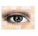 Association des personnes handicapées visuelles